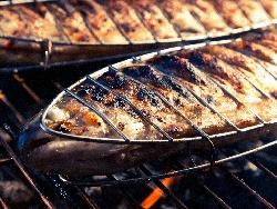 Печена риба пъстърва на скара с билки - мащерка, розмарин, див лук - снимка на рецептата